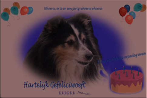 Received from Joke and shelties  2010