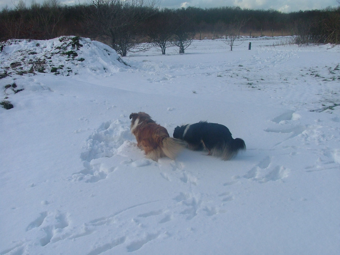 Anna and Emma playing in the snow